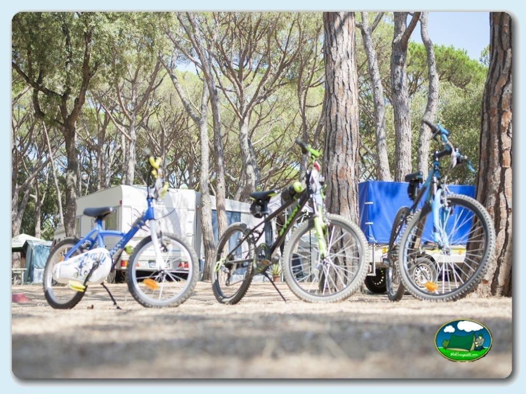 foto del camping Camping Riembau