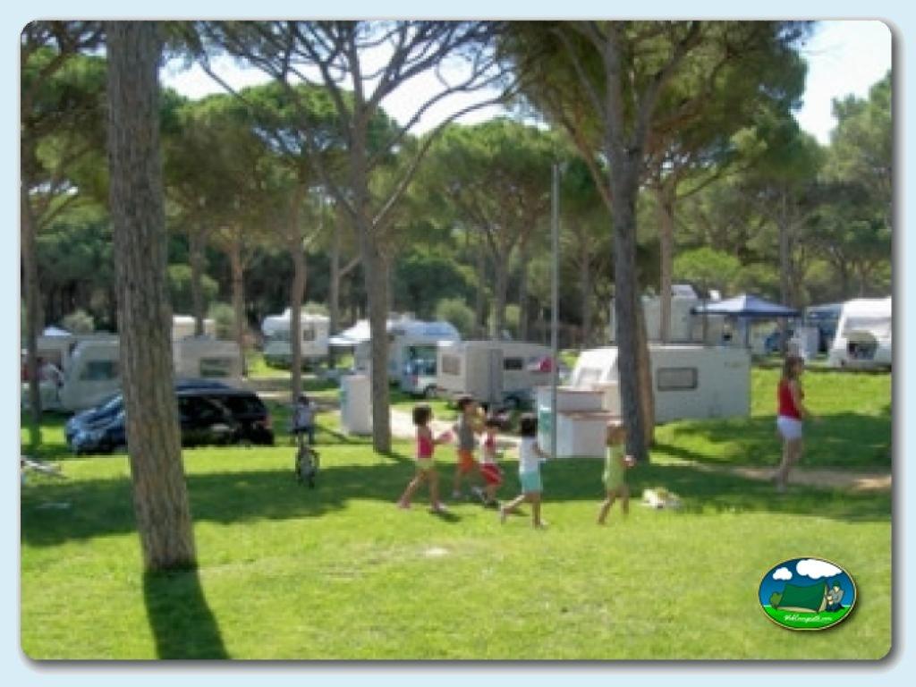 foto del camping Camping Pinar de San José