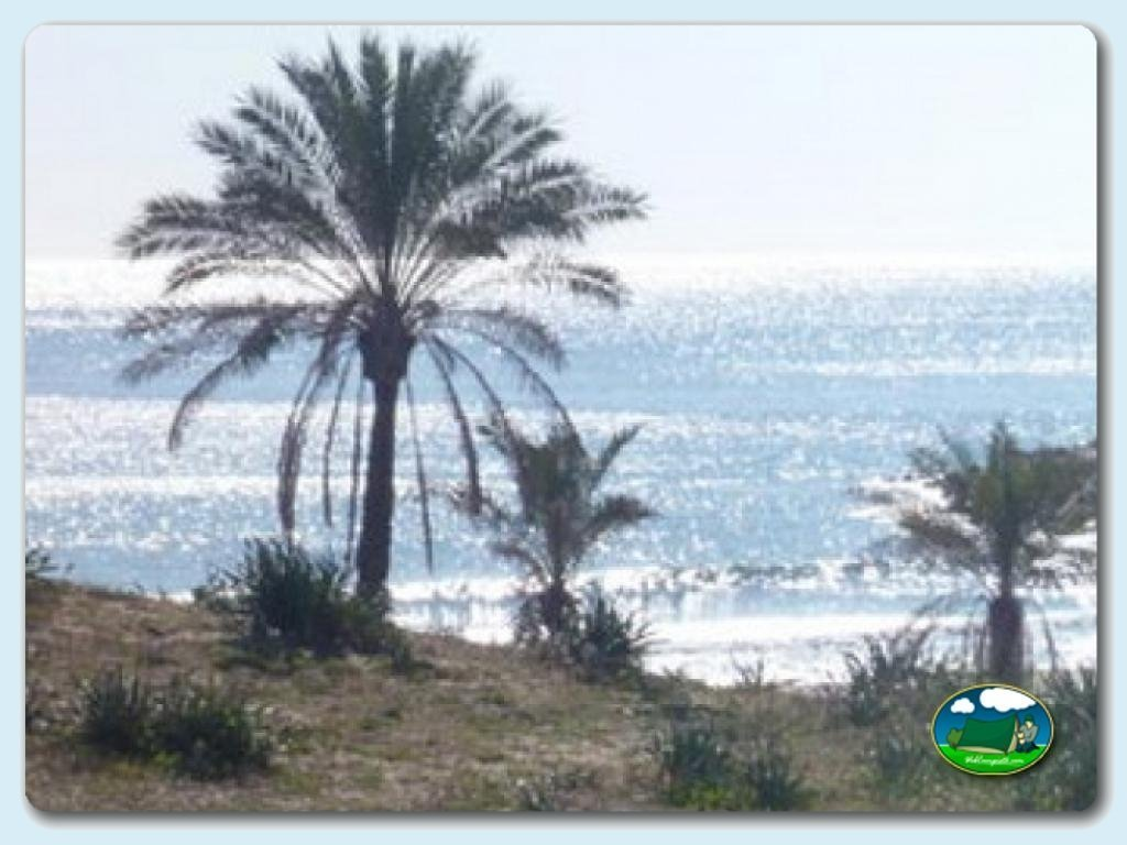 foto - Playa