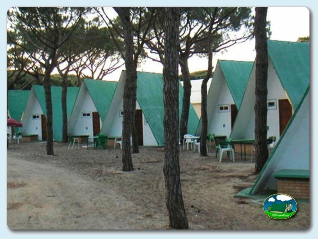 Camping Donana Playa En Matalascanas