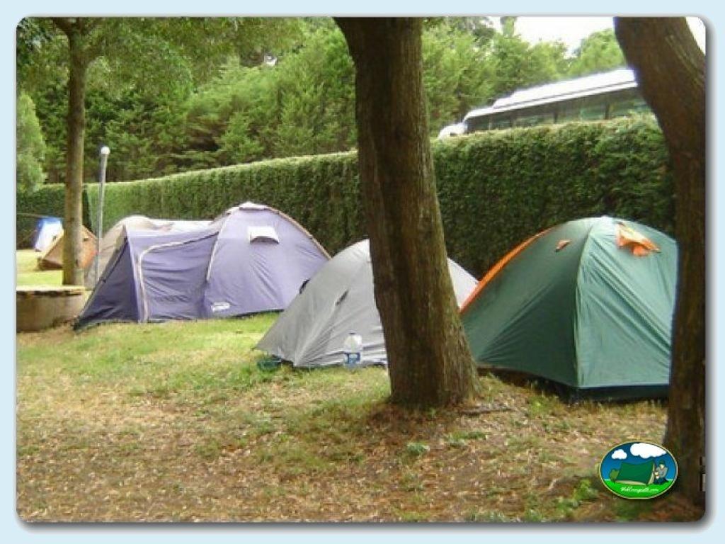 Camping vivero en viveiro lugo galicia espa a p gina for Viveros ourense