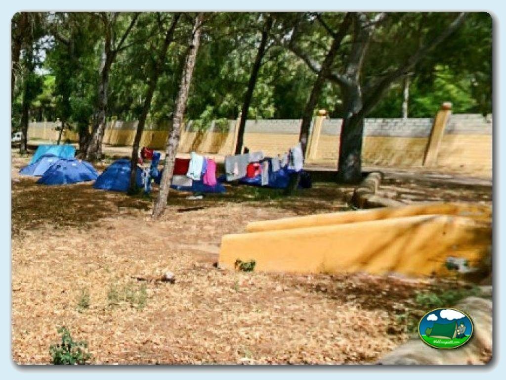 Datos sobre el camping las dunas c diz andaluc a espa a for Camping el jardin de las dunas
