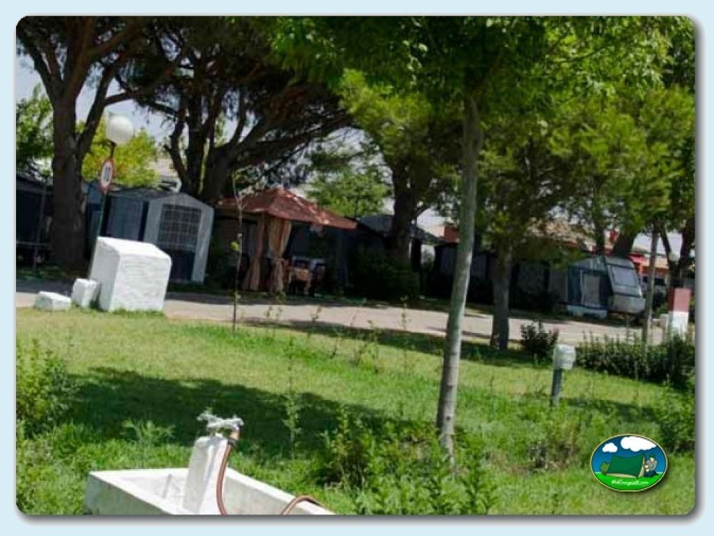 foto del camping Camping La Rana Verde
