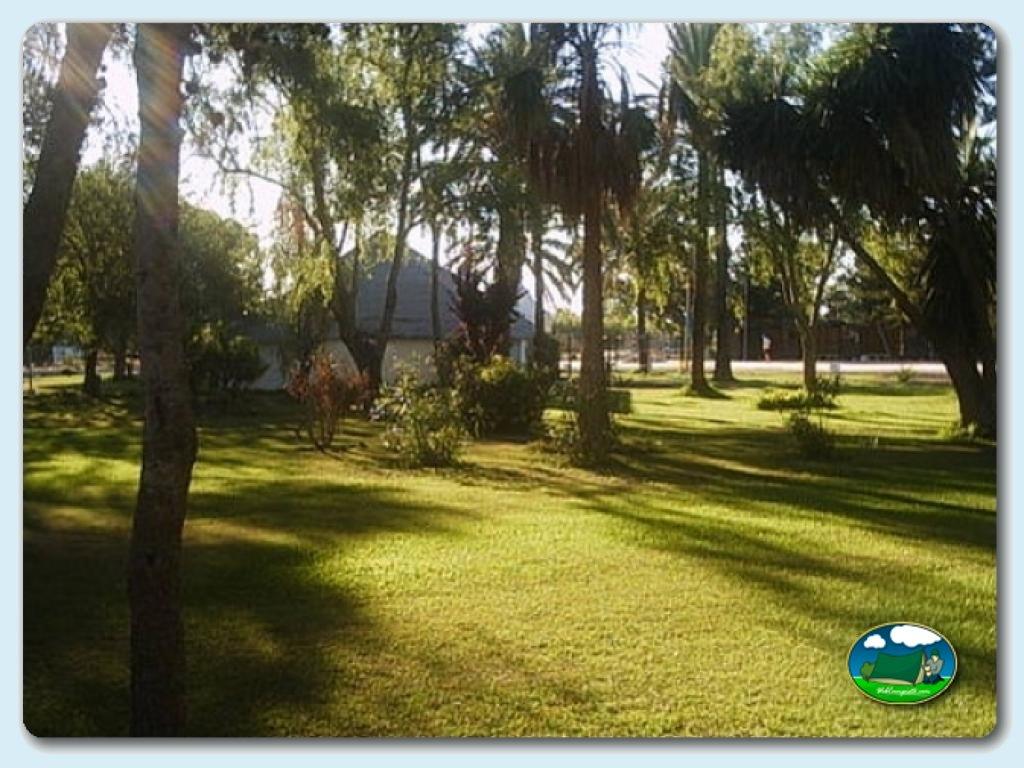 Instalaciones del camping la rana verde informaci n y for Camping jardin de las dunas