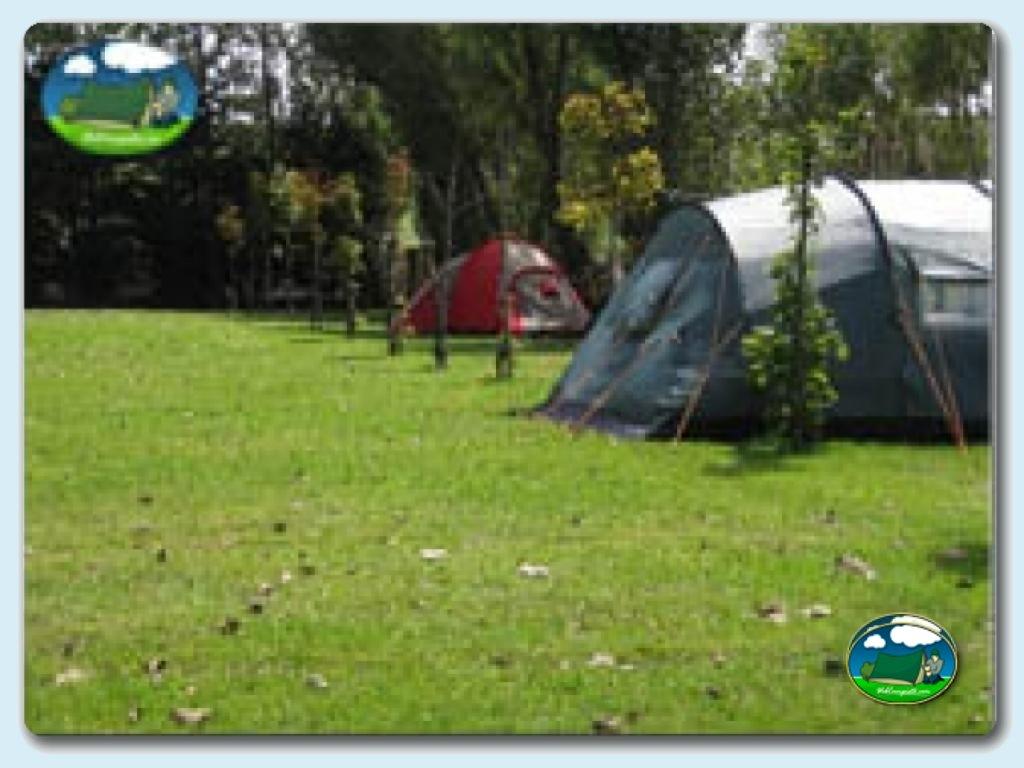 foto del camping Camping Camping Virgen del Mar