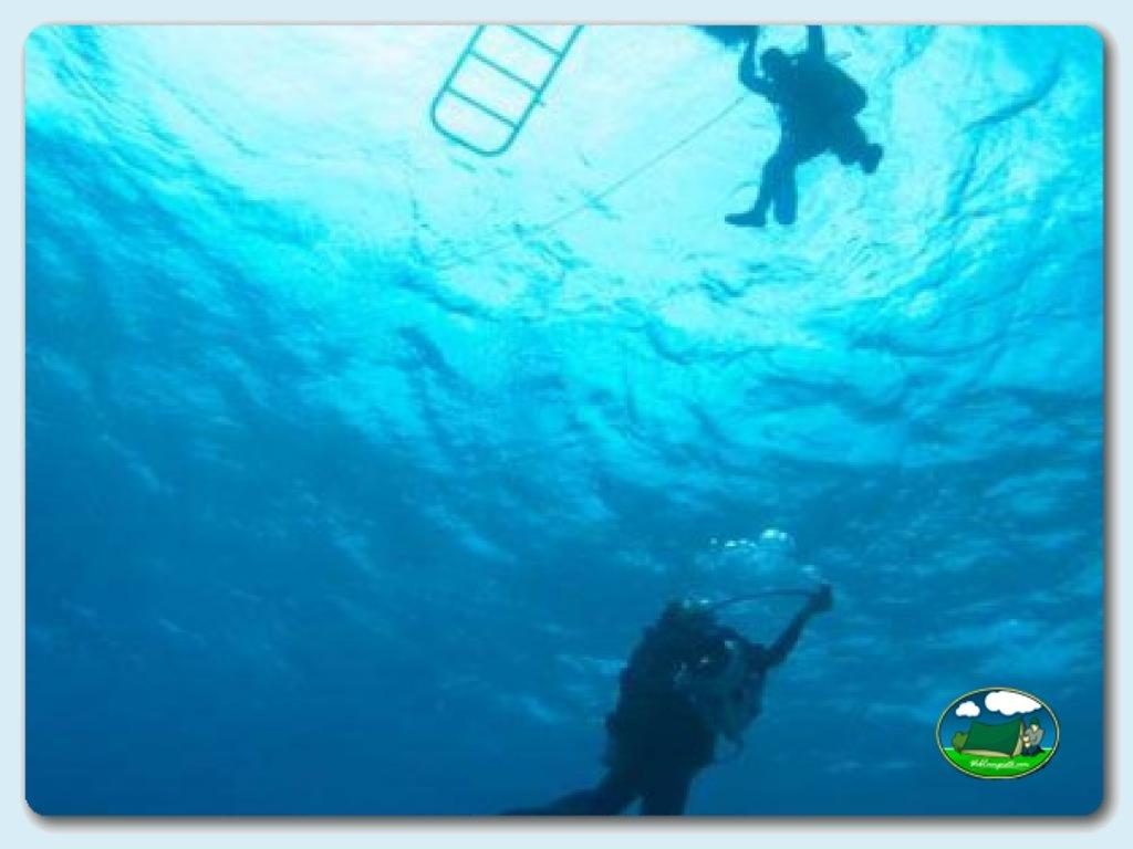 foto - Submarinismo y Aventura